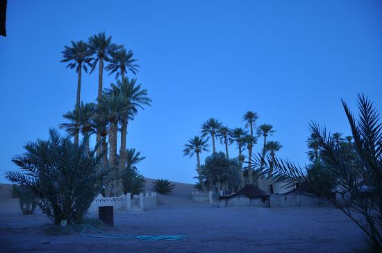 Auberge Camping Sahara: Umgebung