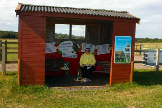 Redwings Horse Sanctuary: info centre halfway round