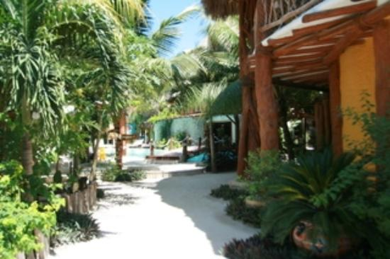 Holbox Hotel Casa las Tortugas - Petit Beach Hotel & Spa : The entry of the hotel