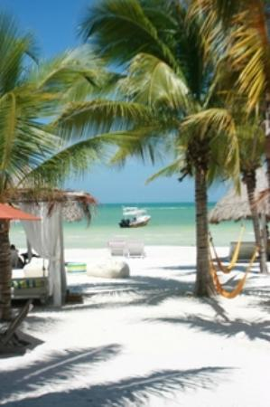 Holbox Hotel Casa las Tortugas - Petit Beach Hotel & Spa : View of the beach from the restaurant