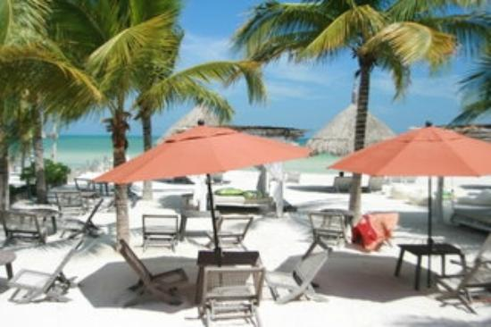 Holbox Hotel Casa las Tortugas - Petit Beach Hotel & Spa : View of the beach