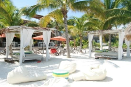 Holbox Hotel Casa las Tortugas - Petit Beach Hotel & Spa: View of the beach