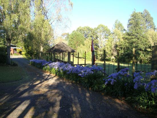 Mokoia Downs Estate B&B: Grounds