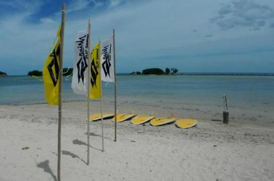 Naish SUP Samui