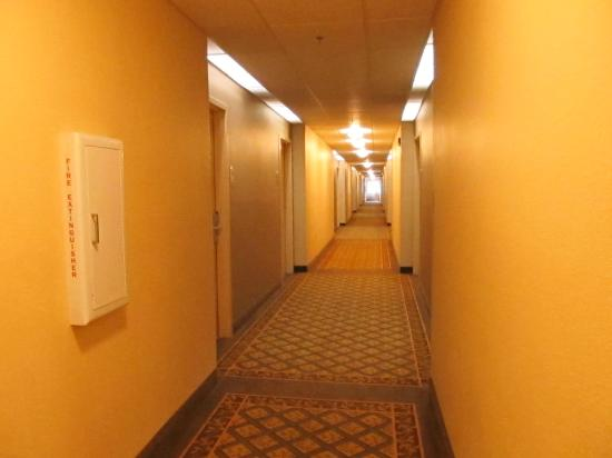 Hawthorn Suites by Wyndham Raleigh: no art, nothing pleasant, then, there's the smell