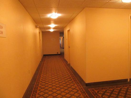 Hawthorn Suites by Wyndham Raleigh: long hallways with creepy corridors