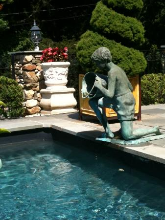 The Fernbrook Inn: Lap pool