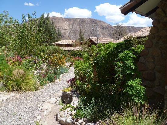 Casa Colibri eco-Lodge: Gardens