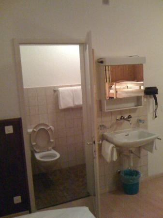 Hotel Rheinfall : WC + shower in a bigger room