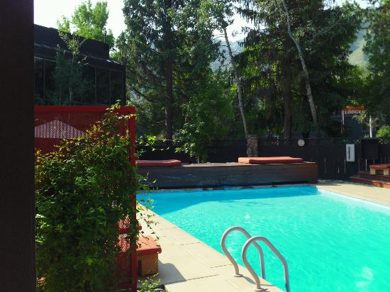 Hotel Aspen: Nice pool surrounded by trees