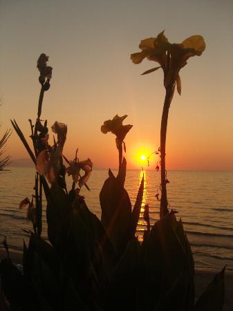 Sealight Resort Hotel: Sunset on Ladies Beach