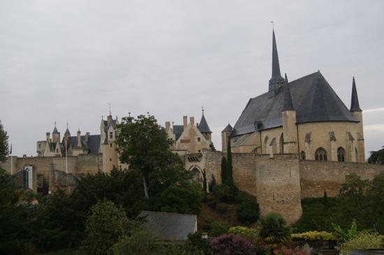 Hotel Le Relais Du Bellay : vue de la chambre