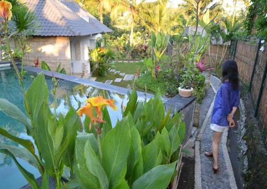 Sang Fajar: ガーデンから客室へ 