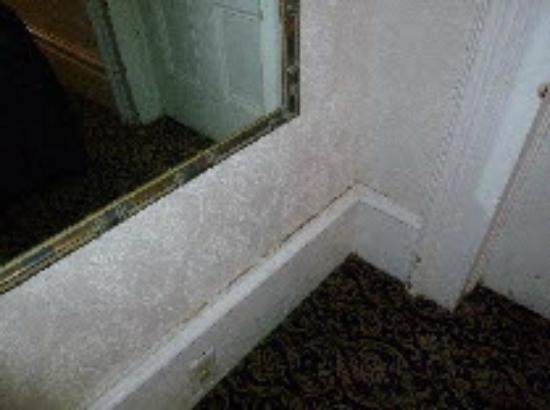 Didjeridoo Dreamtime Inn: Unclean hallway