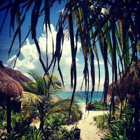 Retiro Maya Villas : Path from Reception to the beach