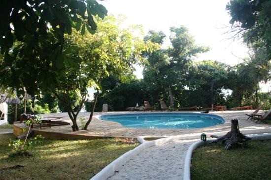 Ras Kutani: La piscine