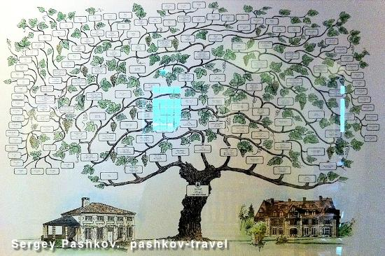 Martell Cognac : Семейное древо Martell