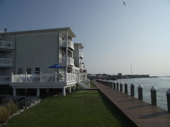 Comfort Suites Chincoteague: View of the back of the hotel.
