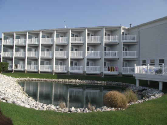 Comfort Suites Chincoteague: What the back of the hotel looks like!