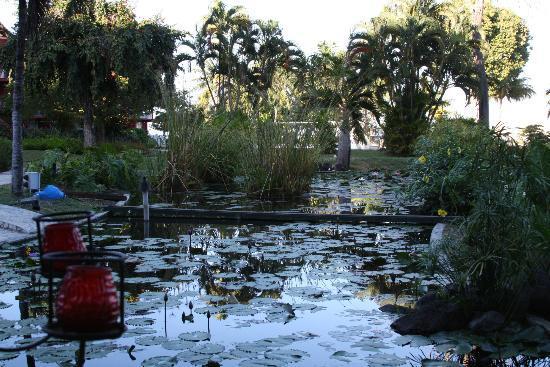 Le Meridien Tahiti : Garden