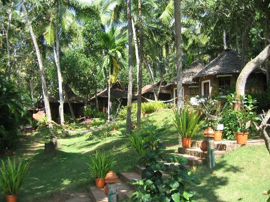 Chowara, الهند: Hotel grounds