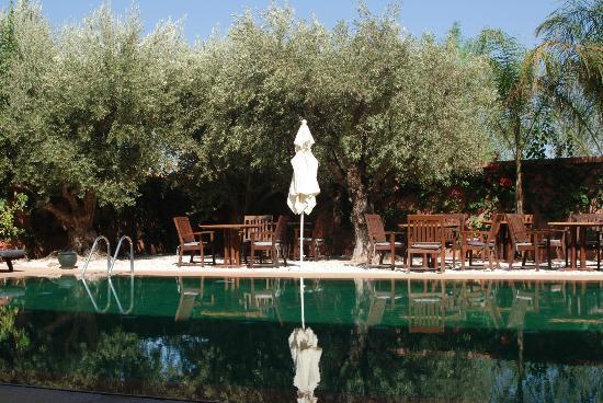 Al Fassia Aguedal: Pool