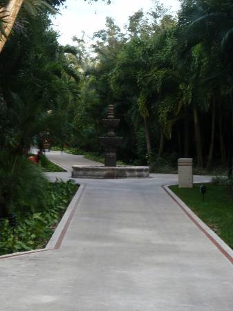 Occidental Cozumel: grounds