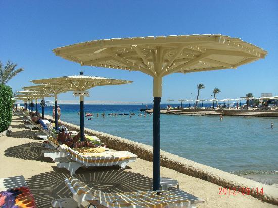 Hurghada SeaGull Beach Resort : plaża