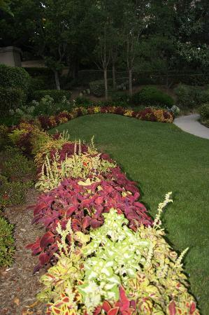 The Langham Huntington, Pasadena, Los Angeles: Beautifull garden!