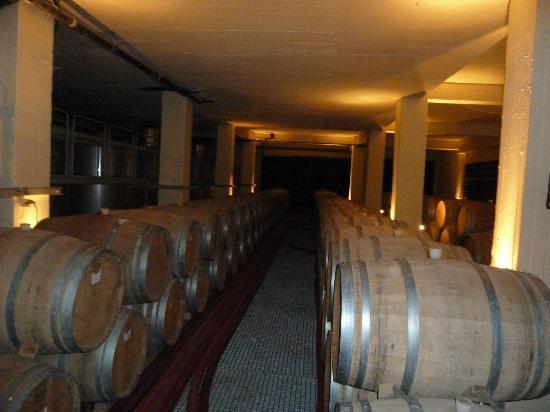 Santorini Wine Adventure: Boutari Oak Casks