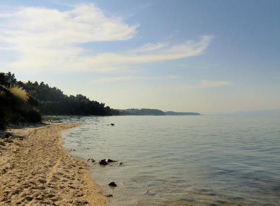 Kriopigi Hotel: Beach