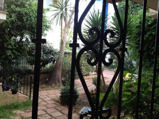 Villa Albero: vista del patio desde la ventana 101