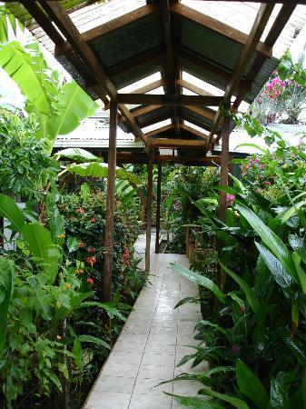 Entry to Hotel Pura Vida
