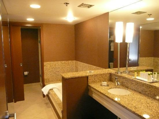 DoubleTree by Hilton Chicago - Arlington Heights: Huge bathroom