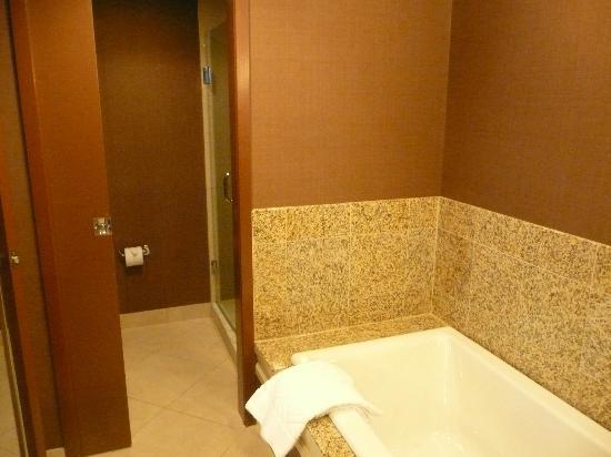 ‪دبل تري باي هيلتون شيكاجو - أرلنجتون هايتس: Bathroom separate tub and shower
