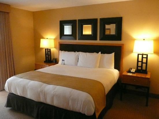 DoubleTree by Hilton Chicago - Arlington Heights: Bedroom king size bed