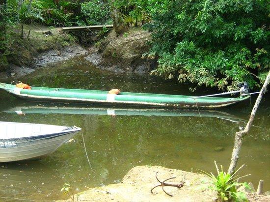 Cachoeira do Rio do Engenho ( Cachoeira do Cleandro ): Foto da canoa na quel o passeio é feito.