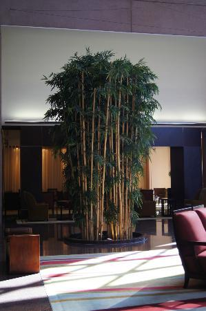 Hilton Houston Post Oak: Lobby