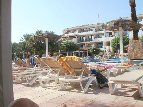 Hotel Club Bahamas Ibiza: next to pool