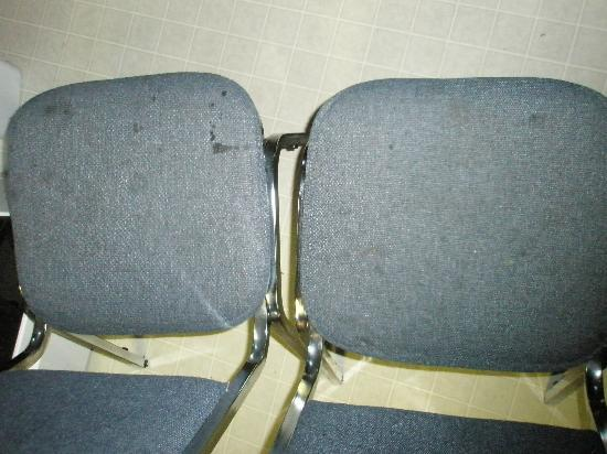 Whispering Pines Motel: Dining Chairs
