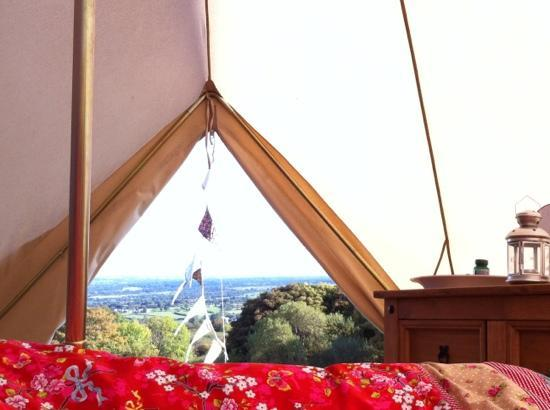 Seventh Heaven Glamping Ltd: view from our bed in the morning