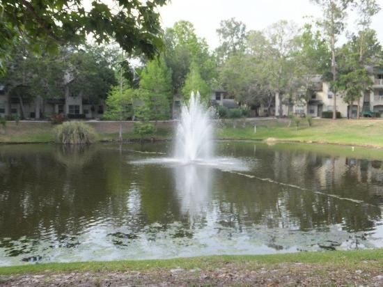 Oak Plantation Resort: The Pond