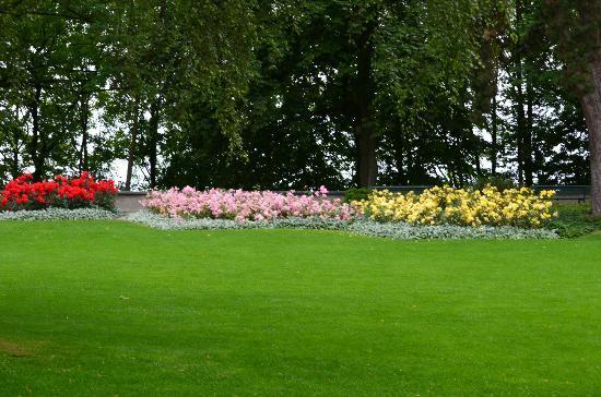 Rose Garden (Rosengarten): Pasto y flores