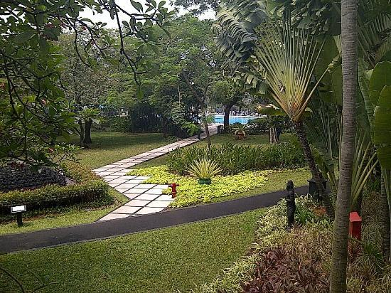 Pool and garden view picture of hotel borobudur jakarta for Green garden pool jakarta