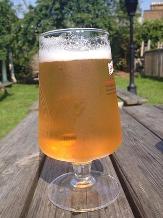 Norbiton and Dragon: Cool lager in the beer Garden