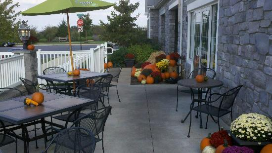 Fall on the patio at UnCommon Pizza