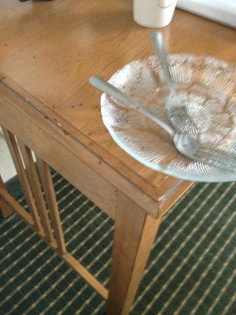 Howard Johnson Plaza Hotel Madison: Ants covering our empty plate in less than 2 hours in our room.