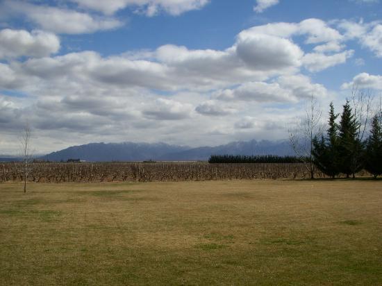 Bodega Ruca Malen: View.