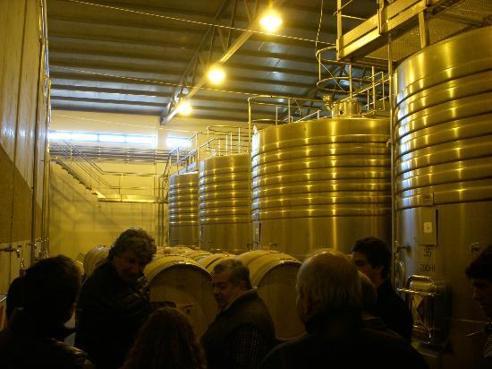 Bodega Ruca Malen : More wine.