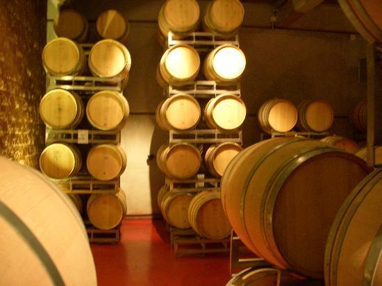 Bodega Ruca Malen : More wine resting in oak barrels.